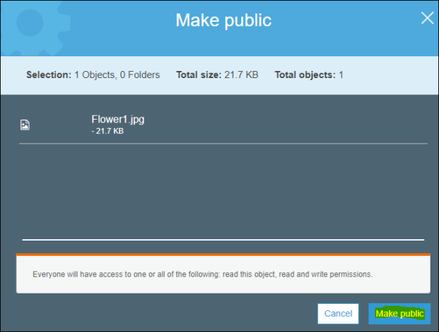 Make public object access